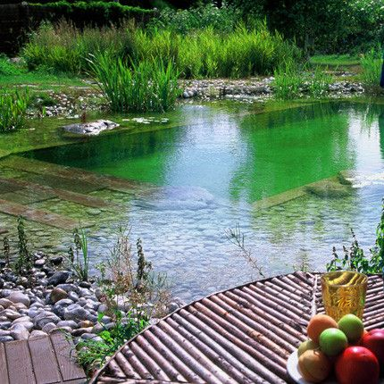Une piscine naturelle for Piscine naturelle