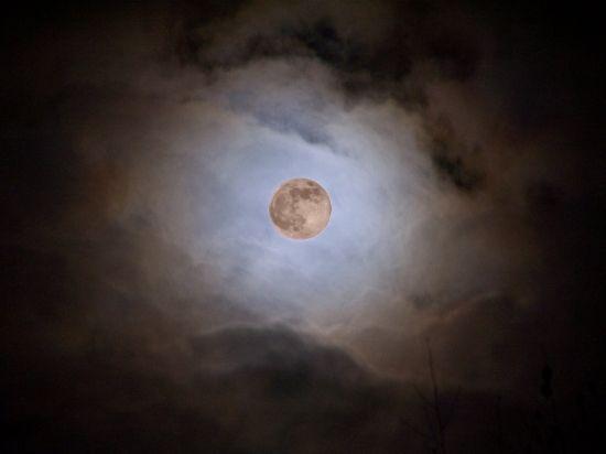 Lecture page 5 - Jardinner avec la lune ...